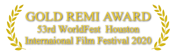 Houston_Gold Remi Award-min